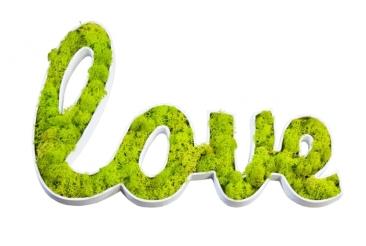 Love végétal