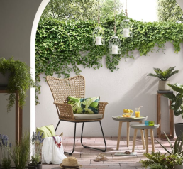 Tendance déco Jungle Tropical